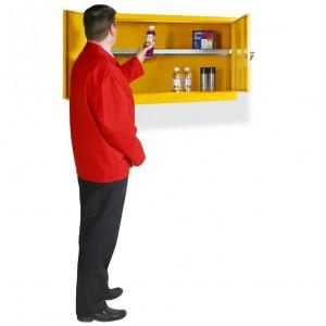 Wall Mountable Elite Flammable Cabinet